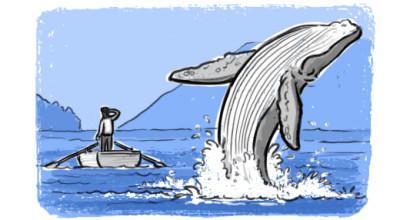 DojoBlogGraphic-WhaleBreaching (2)